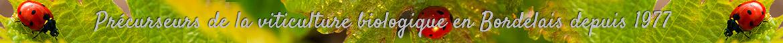 Château Rolin Haut Briand, précurseurs de la viticulture biologique en Bordelais depuis 1977. De grands vins bio de Bordeaux. Cuvées classiques et vieilles vignes