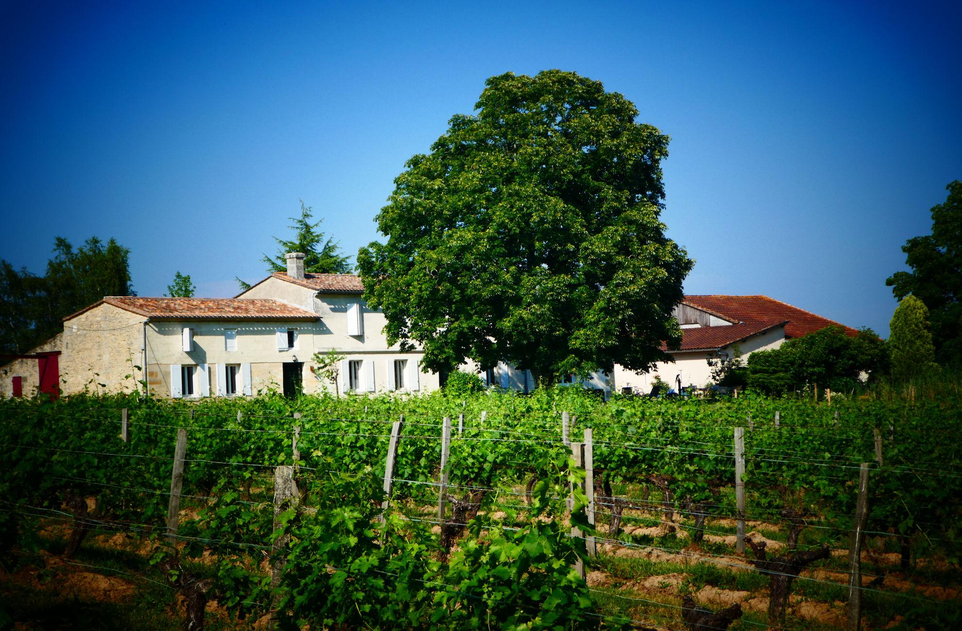 propriété viticole maison 1770