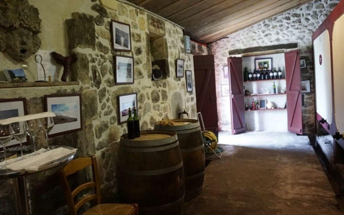 composition du chai de vinification, cuves ciment et barriques de chène